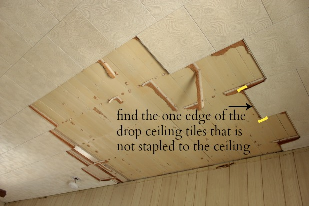 how to remove a drop ceiling drop it