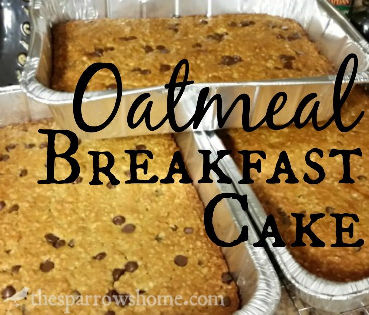 Oatmeal Breakfast Cake... and the Best Reason to Be Exhausted!