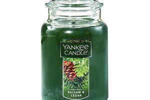 Yankee Candle Large Jar Candle $10.99 (Regular $27.99)