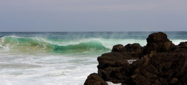 wave_7706_w