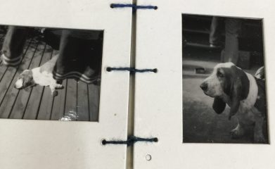 Inside pages from Laundry Dog, a bean book of silver gelatin prints.