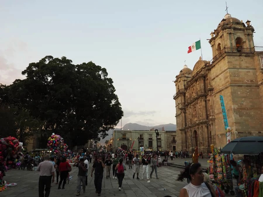 The city square in Oaxaca Mexico. The square was lined with huge trees, historical churches, and beautiful cobblestone roads. Definitely a must see! | via The Spirited Violet