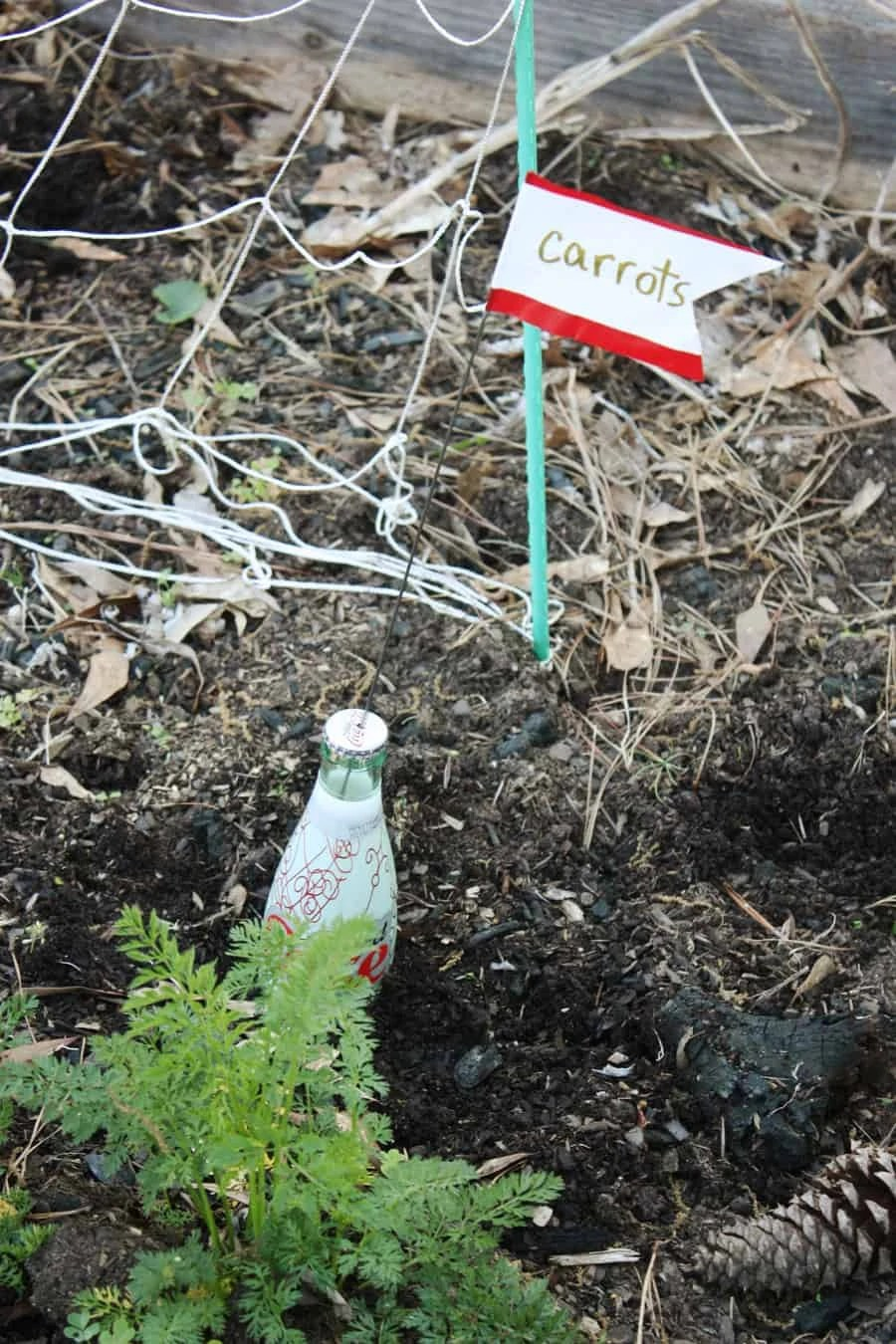 DIY garden plant markers: an easy way to recycle glass bottles and add more color to your yard! | via The Spirited Violet