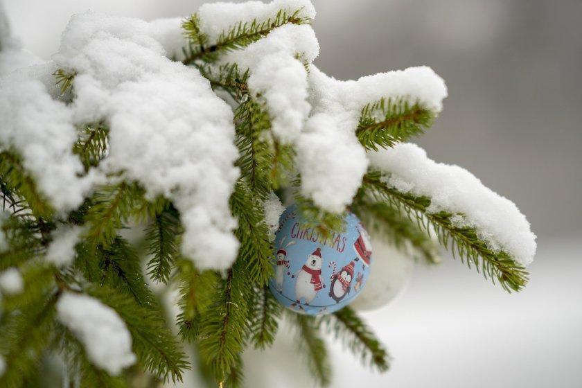 chrtsimas-tree-snow.jpg