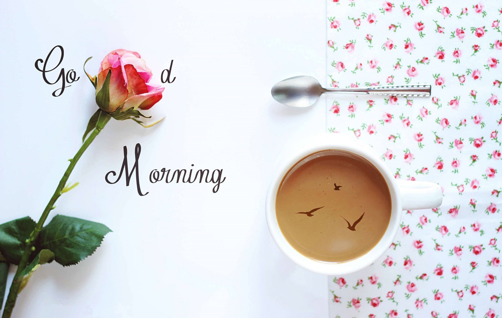Awesome Good Morning HD Wallpapers Greetings Quotes