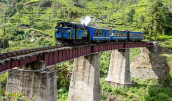 Everything You Need To Know If You Are a First Timer to South India