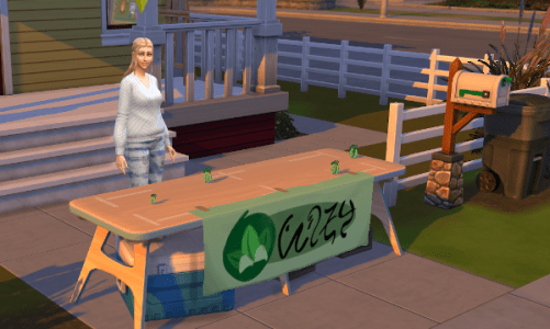 Sim having a yard sale
