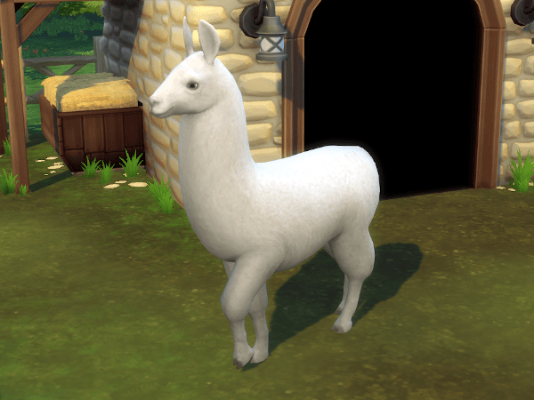 Sims 4 Cottage Living llama