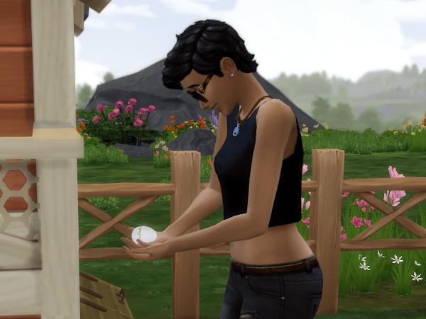 Sims 4 Cottage Living hatch chick