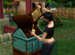 Sims 4 collect honey from bee hive