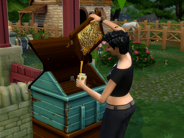 Sims 4 collect honey from beehive