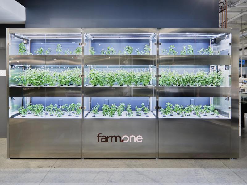 Farm.One Installs Its Mini-Vertical Farm at Whole Foods in Manhattan