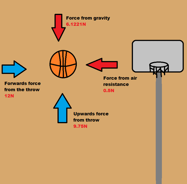 Basketball  The Sports Nut