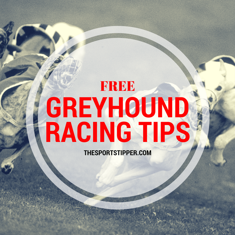 Free Greyhound Racing Tips