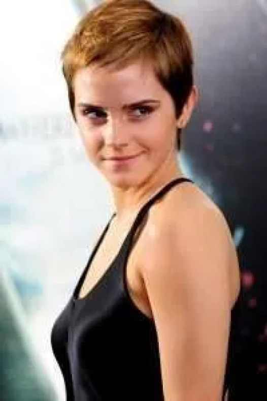 ws_Emma_Watson_Boyish_Cut_640x960-e1422034478295