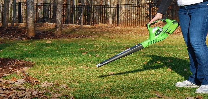 What is the best battery powered leaf blower