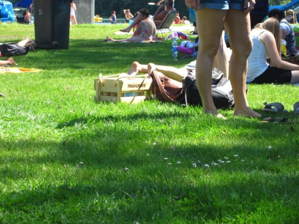 People relaxing on the grass at the Blaarmeersen