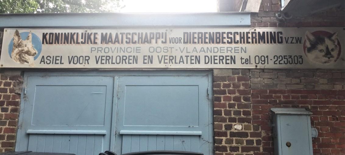 Dierenasiel Gent Sign