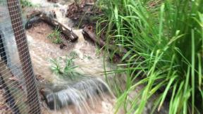A stream flows down this path