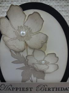 Close up Fabulous Florets