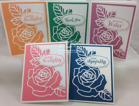 Rose Wonder In Colors