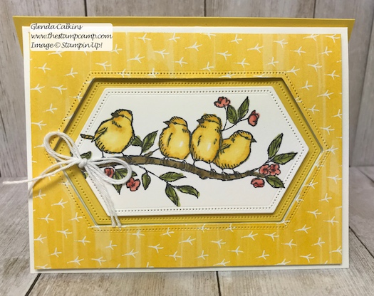 This is my featured stamp set for July. This is a bit of a different fun fold card with a peek a boo window. Details can be found here: https://wp.me/p59VWq-afN #thestampcamp #stampinup #freeasabird #birdballad
