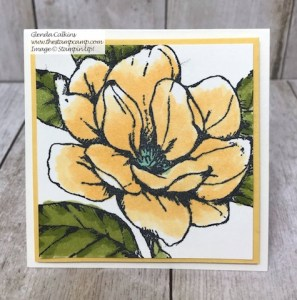 Good Morning Magnolia 3 x 3 Card Perfect for Gift Box
