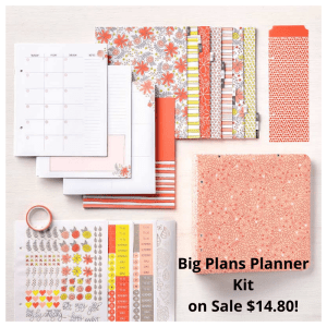 If you love planners you will love Stampin' Up!s Big Plans Planner Kit. Details on my blog here: https://wp.me/p59VWq-aDY