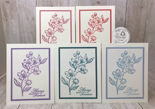 My featured stamp set this month is the Forever Blossoms bundle. These are the 5 In Colors for 2019-2021. Details can be found on my blog here: https://wp.me/p59VWq-aQm #stampinup #thestampcamp #incolors #foreverblossoms