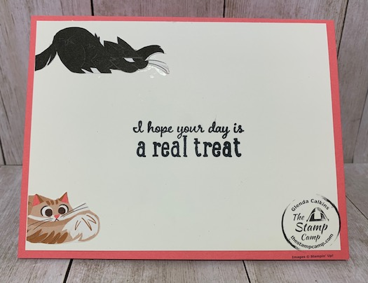 Whether you are a dog lover or a cat love you will love the Playful Pets Suite of products from Stampin' Up! This card was created for my granddaughter Sophia who loves dogs but lately says she wants a kitty too. Details are on my blog here: https://wp.me/p59VWq-btk. #stampinup #playfulpets #thestampcamp #pamperedpets