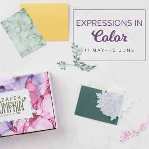 Expressions In Color Is In June's Paper Pumpkin Card Kits