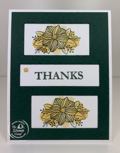Picture This Dies with June's Paper Pumpkin Kit Stampin' Up!
