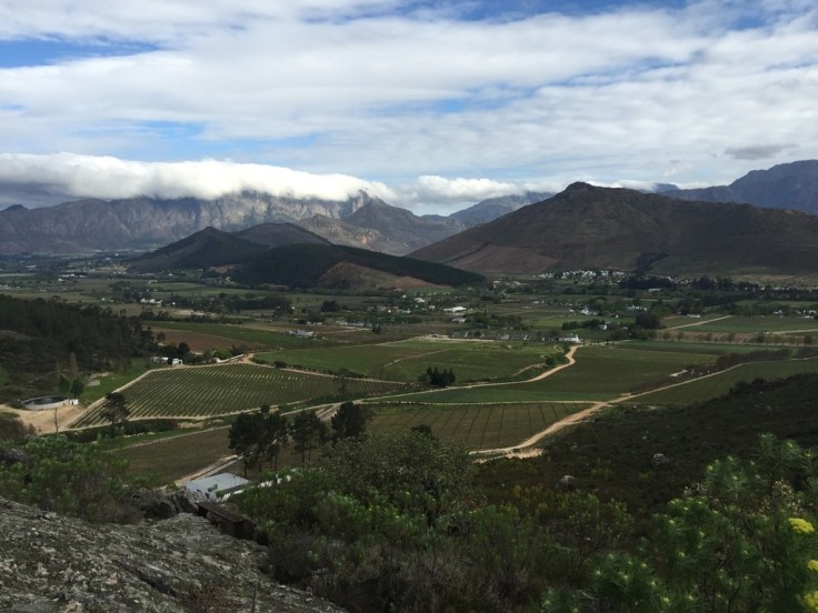 Franschhoek Pinelands