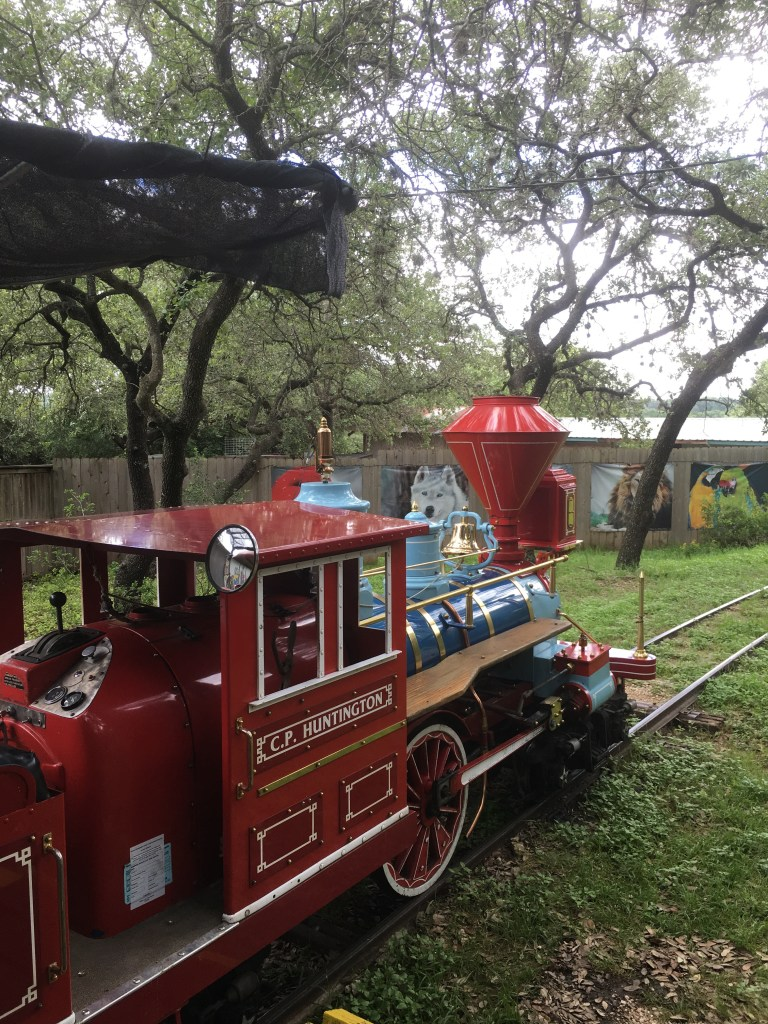Cute ride for kids takes you around the zoo