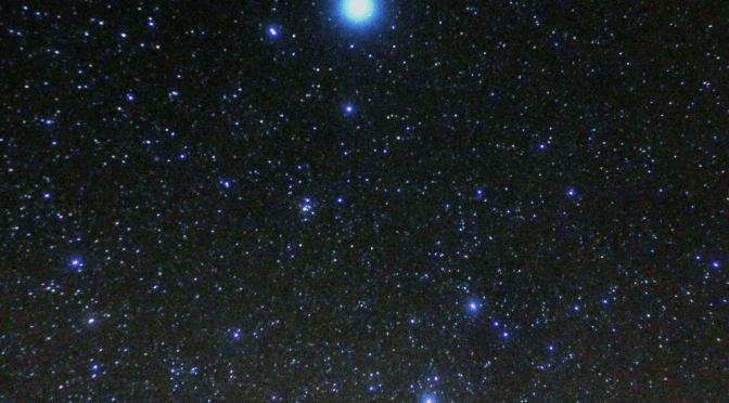 Lyran Starseed Traits