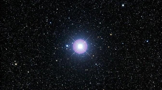 procyon starseeds