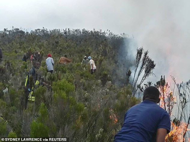 Some of the hundreds of people trying to bring the blaze under control including Tanzanian park service workers, local residents and students