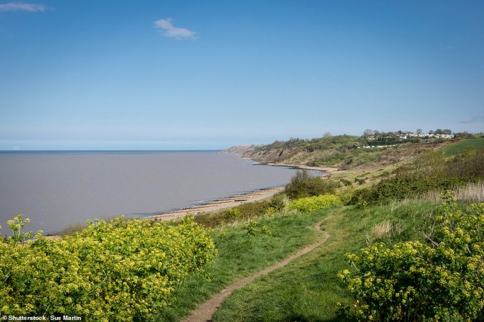 The coastline of Kent's Isle of Sheppey, pictured, produces ossified wonders. It is about 90 minutes by train from London Victoria