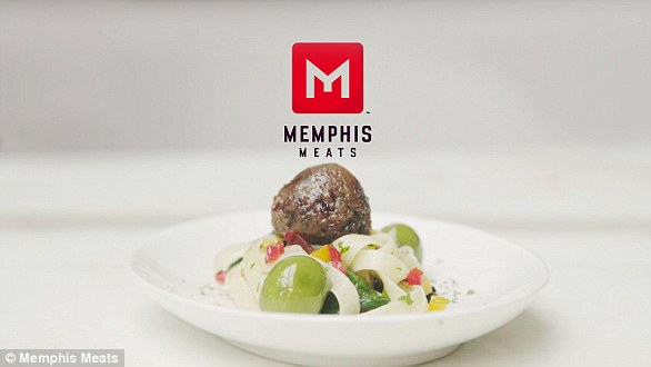 In March 2017, San Francisco firm Memphis Meats successfully grew poultry meat from stem cells for the first time. The company also makes lab-grown meatballs (pictured)