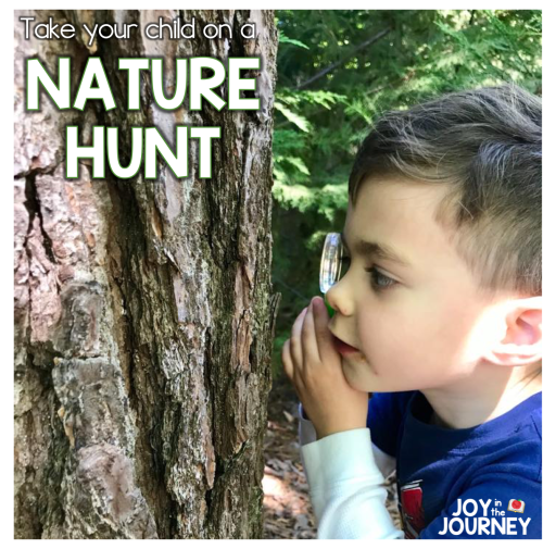 Nature Hunt Preschool Learning Activity