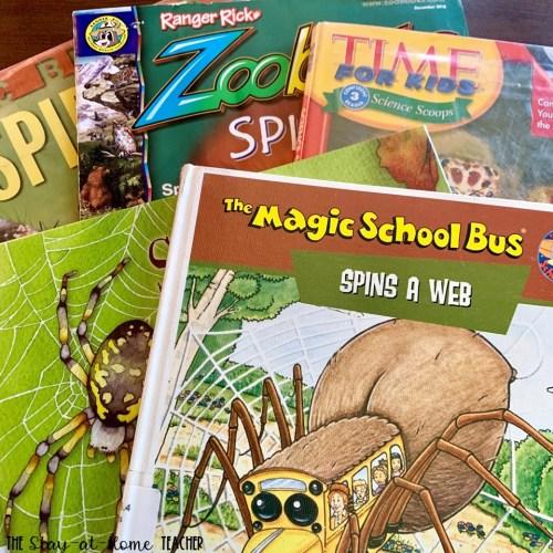 Spider Books