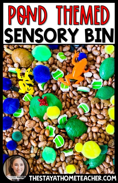 Pond Themed Sensory Bin