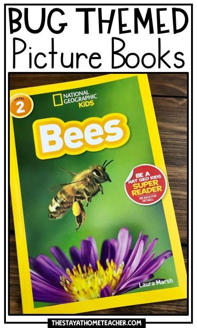 Bug Books pin