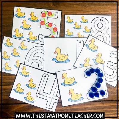 duck counting cards