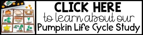 pumpkin life cycle button
