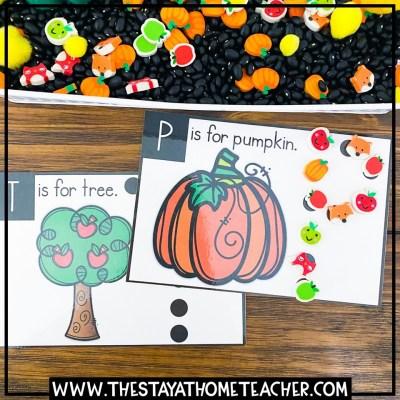 fall sensory cards