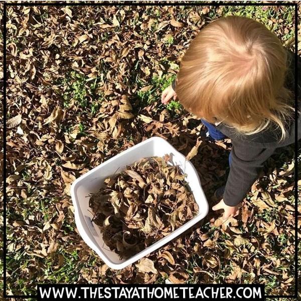 fall leaves bin