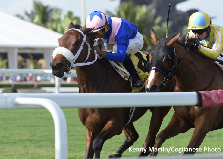 A Bit Special (GB) wins the Wait A While Stakes