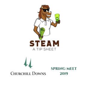 steam_cd_spring_2019_logo