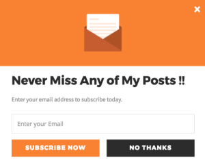 Never Miss Any of My Posts!